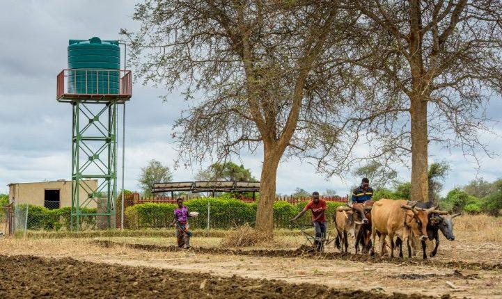 En 59-årig bestemor kjempet seg daglig opp en bratt skråning med 18 kilo vann balansert på hodet. Takket være et bærekraftig prosjekt som sørger for tilgang til rennende rent vann er dette nå fortid. I følge tall fra 2005 utnyttes kun fem prosent av ferskvannsressurser i Afrika sør for Sahara.