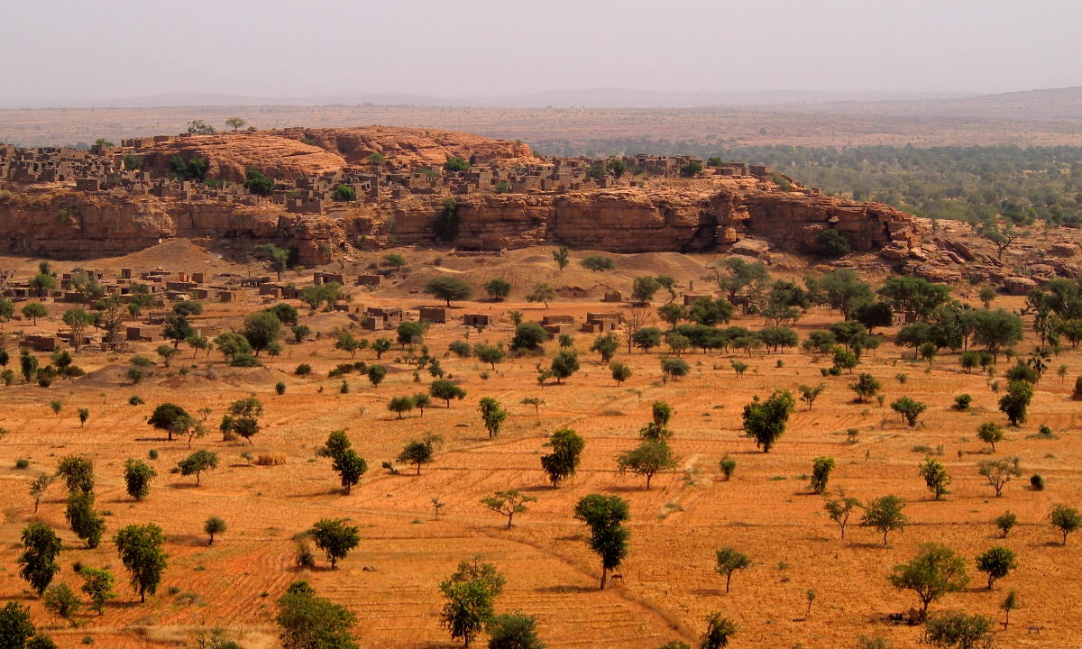 Satellitbilleder viser at afrikanske bønders jakt på brensel ikke har fått ørkenen til å spre seg.