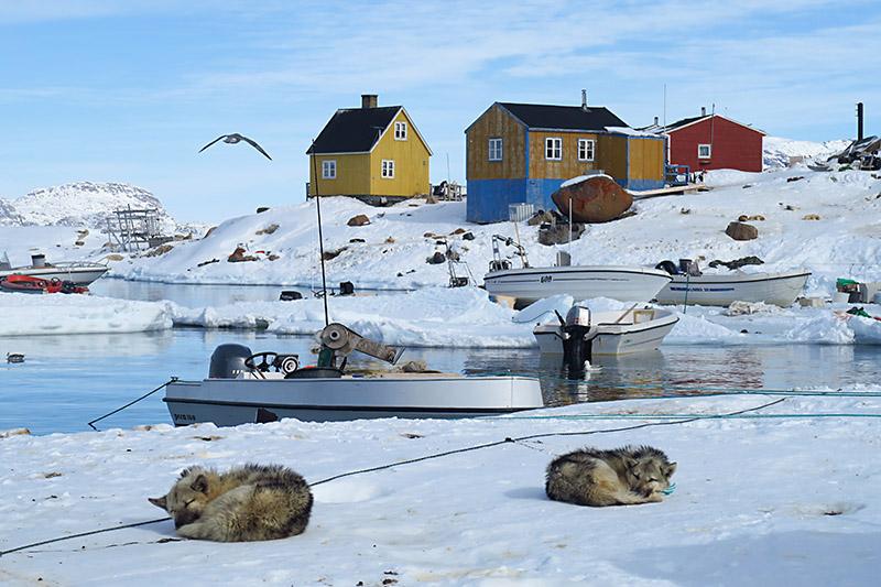 En dansk barnepsykolog har på få år skapt en gratis grunnutdanning i pedagogikk som i dag brukes av pleiefamilier og barnehjem over hele verden. Utdanningen skal nå også hjelpe med å gjøre livet bedre for grønlandske barn.