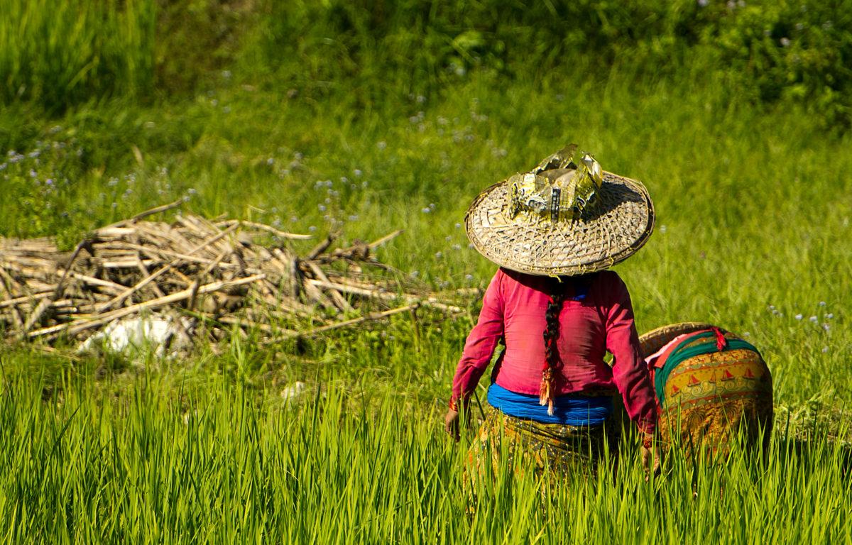 Nepalske kvinner blir nå operert for den funksjonsnedsettende fistel-sykdommen, og tar et steg ut av skammen og stigmatiseringen.