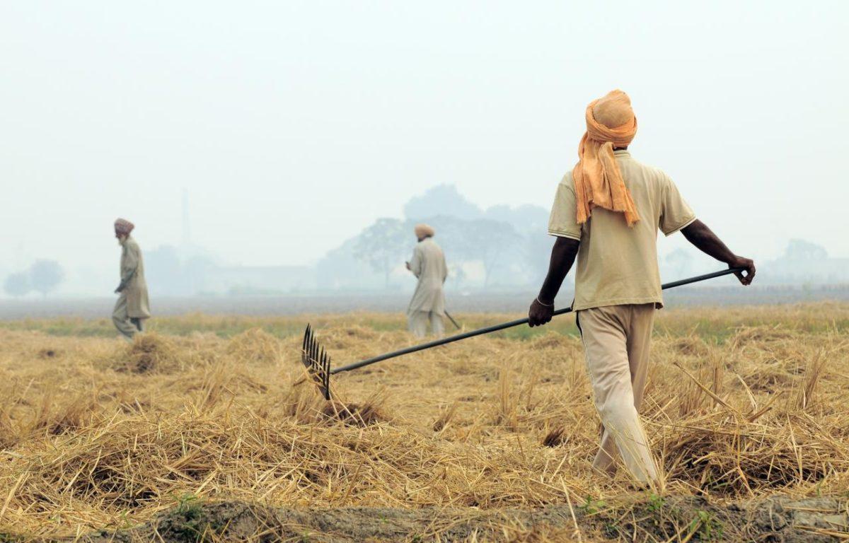Indiske bønder gjør luften renere i Delhi ved å stoppe skadelig brenning av jorder.