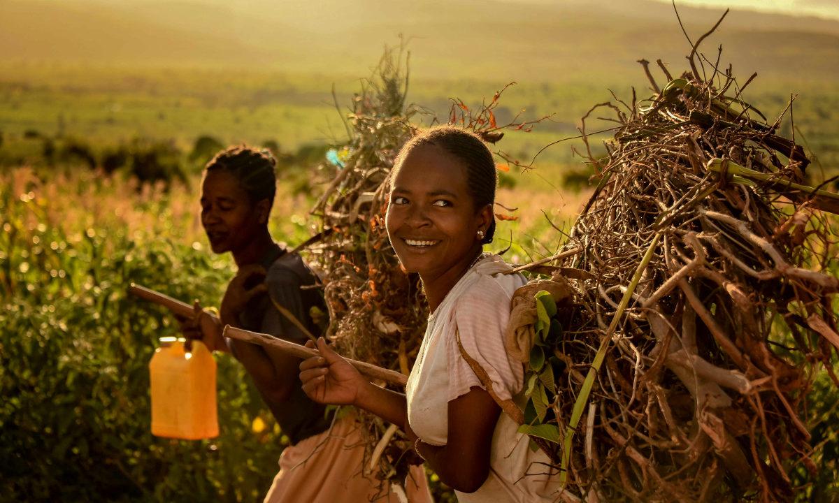 Mange millioner mennesker har nådd en bedre levestandard selv om det fremdeles gjenstår enorme utfordringer knyttet til fattigdom, helse og sult. Og selv om vi ennå ikke er på rett spor i klimakampen, er omstillingen i gang.