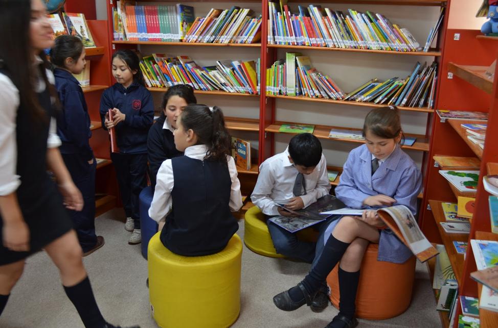 Mange barn som identifiserer seg som transpersoner opplever mobbing og fysisk vold på skolen i Chile. For å gi transbarn muligheten til å fullføre utdanningen sin i et trygt og aksepterende miljø, åpnet Stiftelsen Selenna Latin-Amerikas første skole for transbarn i Chile i 2017.<br />