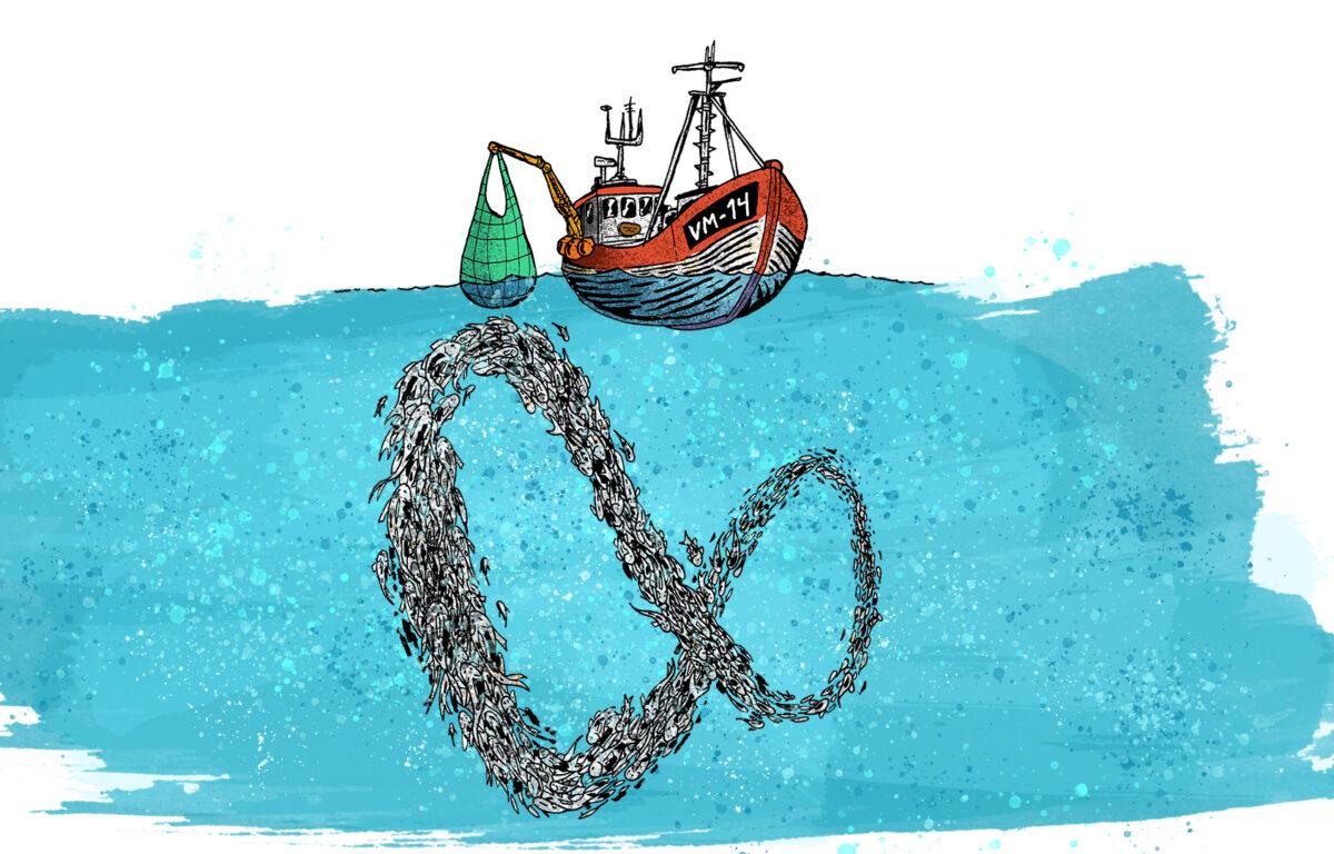 På relativt kort tid har det lyktes å gjøre en større del av verdens tunfiskfangst mer bærekraftig.