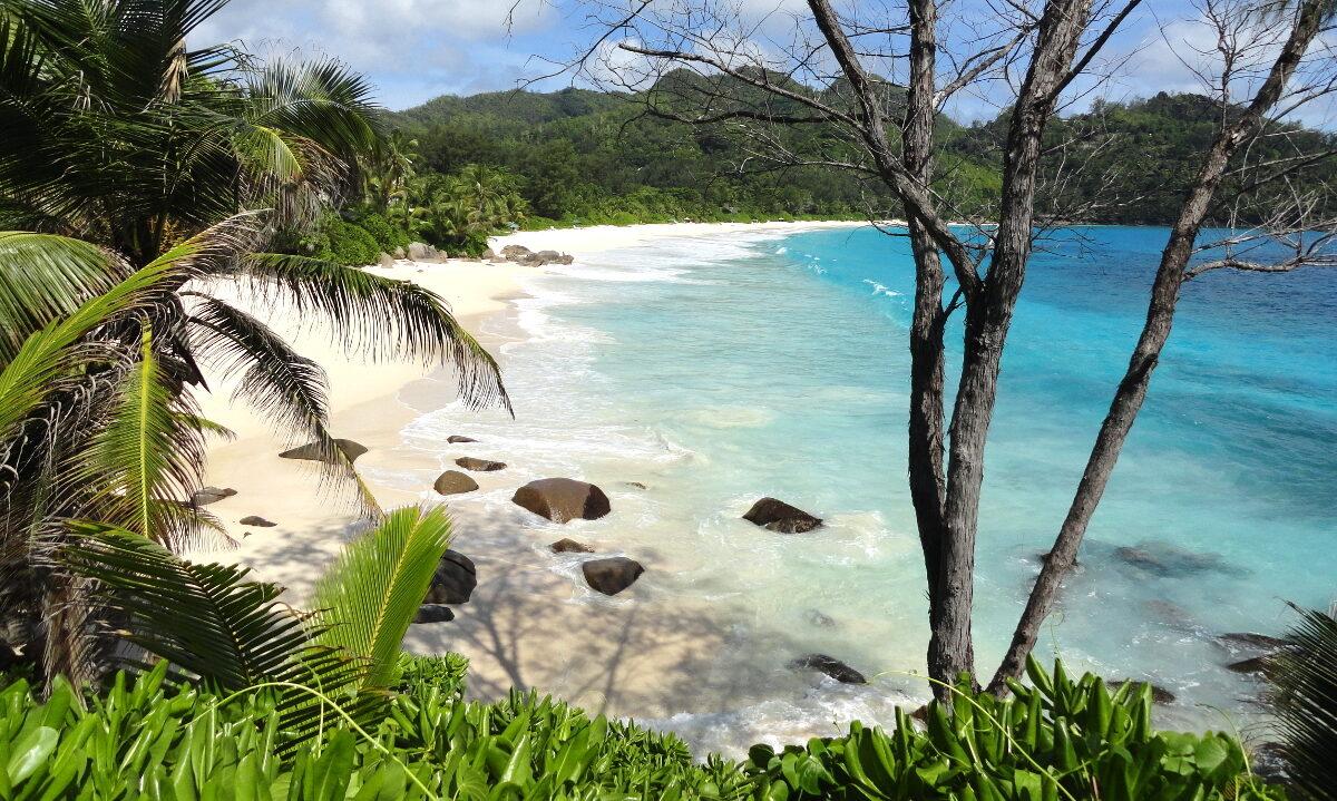 Små land kan skape stor forandring under overflaten. Seychellene og Belize er blant de nyeste landene som freder livsviktige havområder.