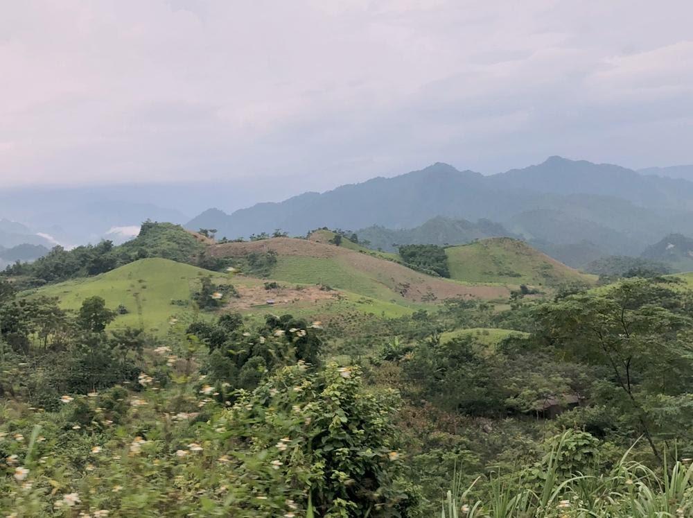 Vietnam er et av flere land som endelig opplever en økning i skogareal. Urbefolkning og kvinner har spilt en helt sentral rolle i arbeidet.